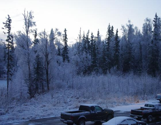Wasilla, Alaska snow fall, October, 29, 2010 (parking lot)
