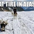 A flat tire in Alaska (funny)