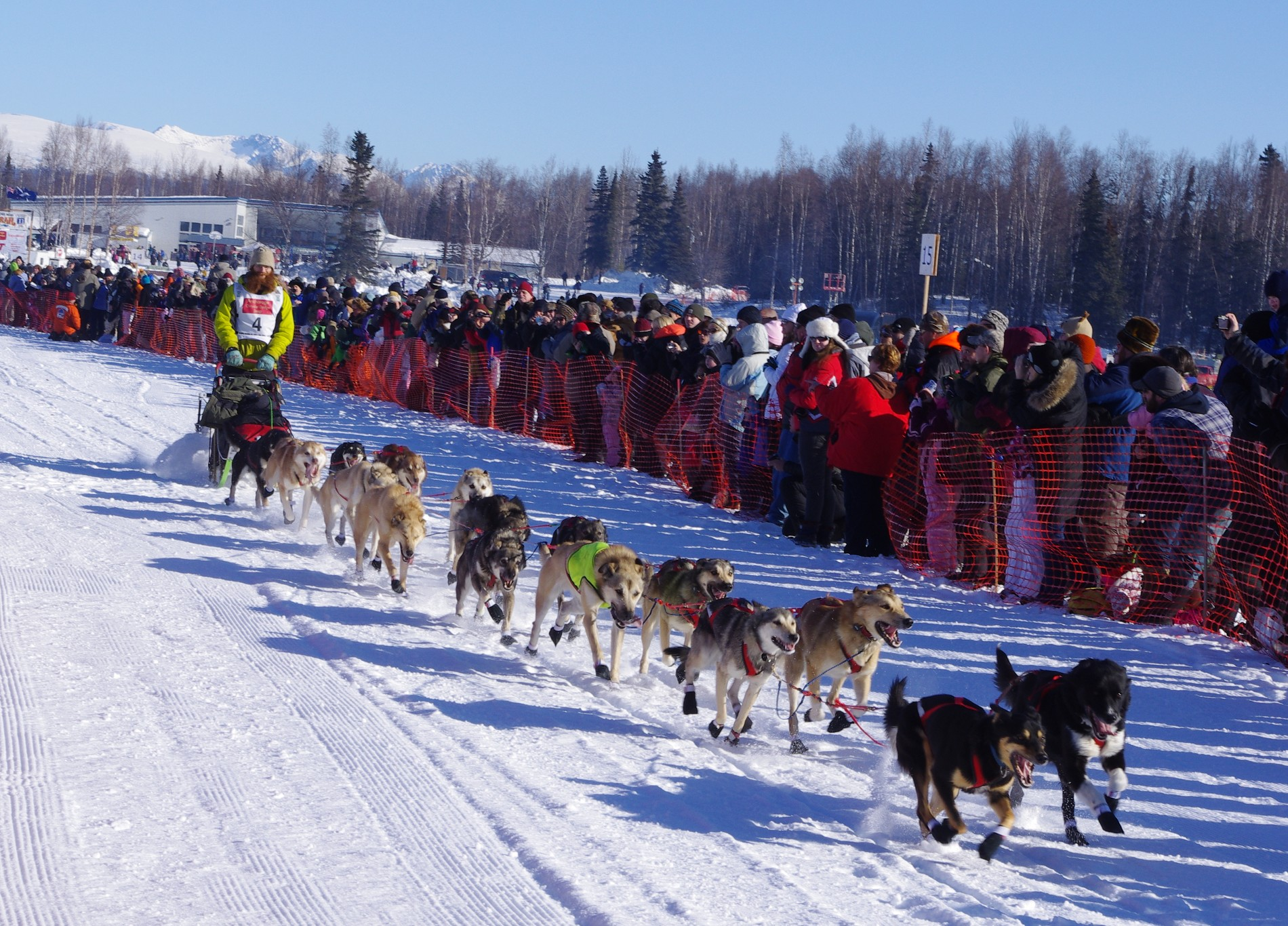 2011 Iditarod Race - Team 4 sled dogs and musher.