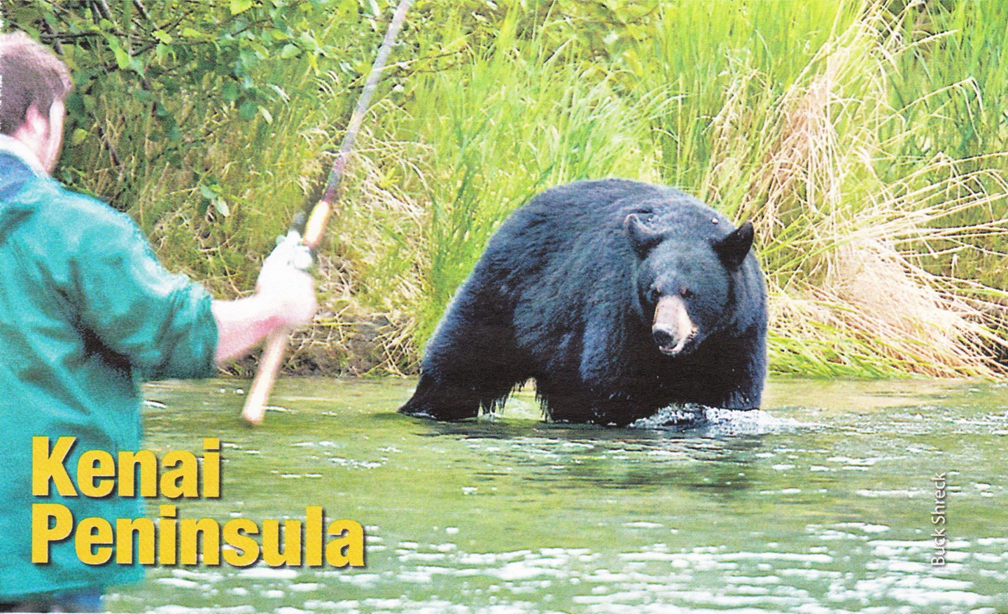 Fishing in Alaska with a black bear.