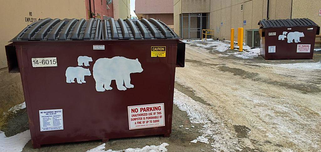 Images of bears on trash dumpsters, Anchorage, Alaska.