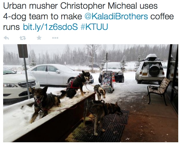 Alaska musher delivers coffee.