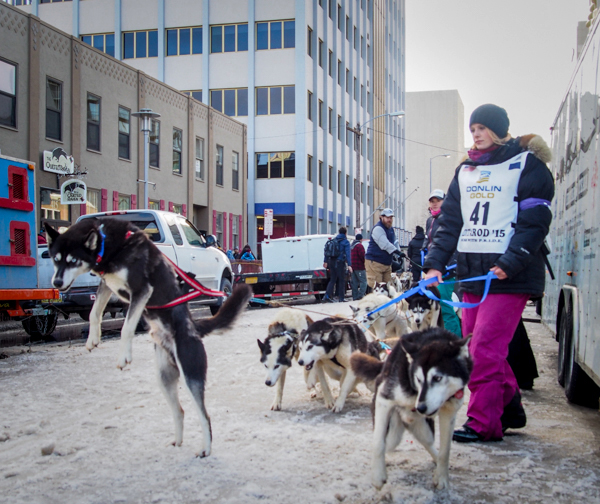 Vroom, vroom (Iditarod sled dogs getting warmed up).