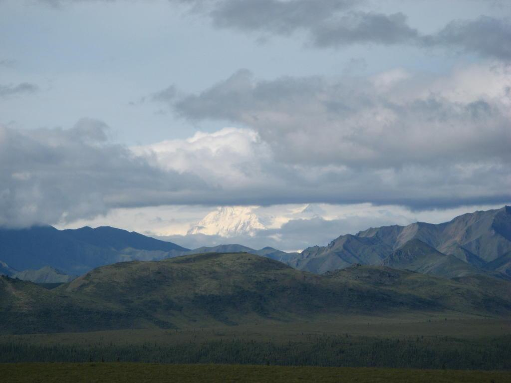 A view of Denali (Mt. McKinley) in the park