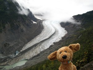 Brownie in Hyder, Alaska, with a glacier behind him